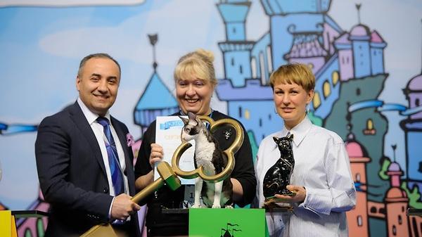 В Москве на выставке кошек «…