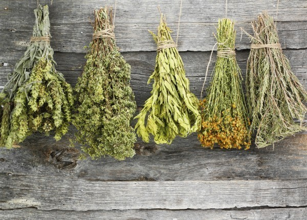 Какое магическое значение имели травы у наших предков