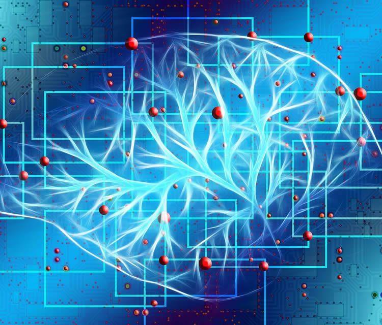 Как «стереть» шизофрению?