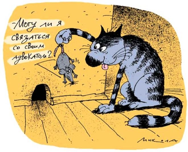 Кот и валерьянка ... Смешная история