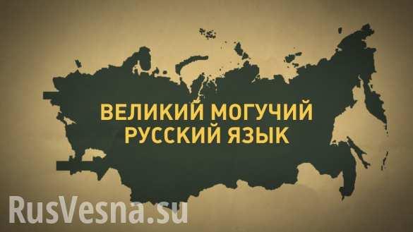 «Из русского алфавита исчезнут 7 букв», — Сеть взорвалась возмущением из-за «новой реформы» (ДОКУМЕНТ)