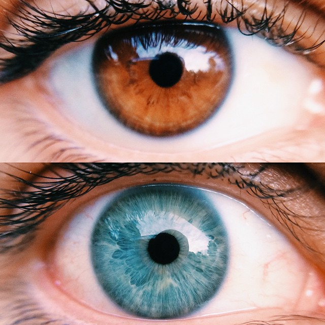 Как сделать карие глаза голубыми в домашних