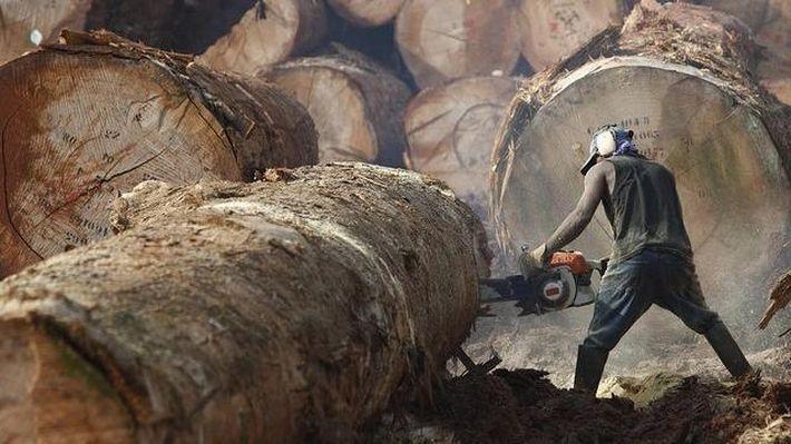13 самых опасных работ в мире