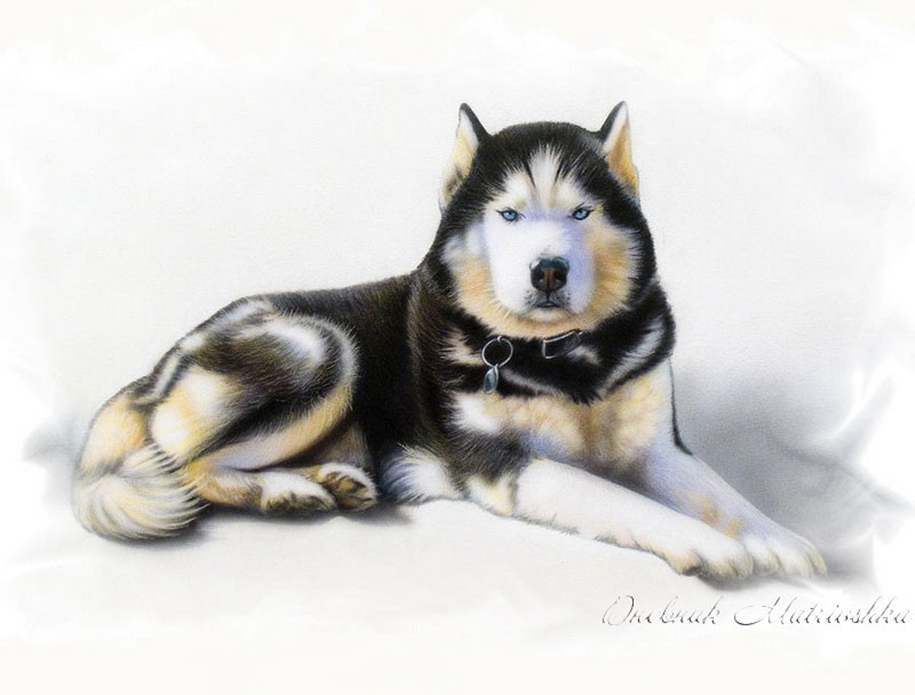 Awesome realistic drawings of animals 27