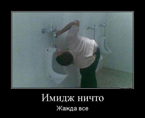 http://mtdata.ru/u16/photo35D8/20901396034-0/original.jpg