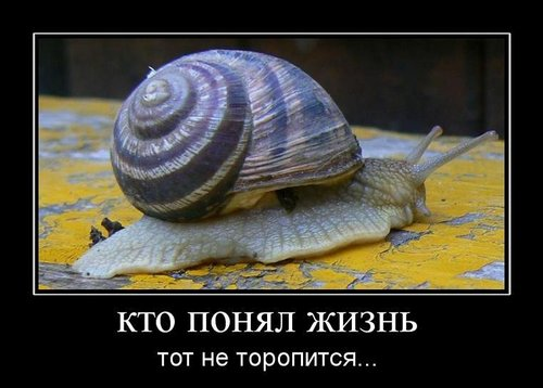 Не торопите жизнь...Елена Волгина