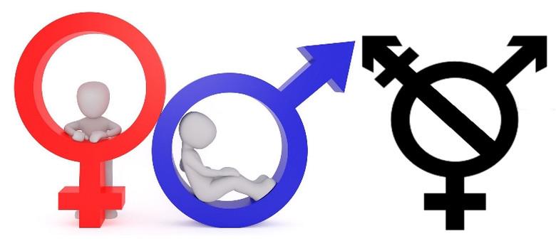 В Германии официально признали третий пол