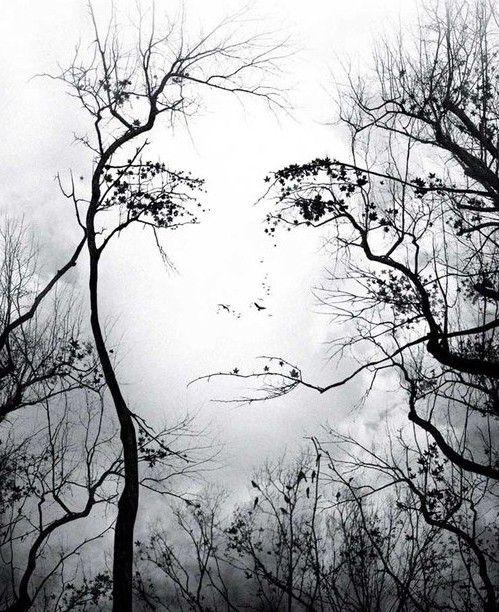 Феномен предвидения - дар небес или подсказка подсознания?