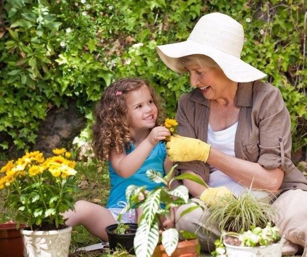 6 бабушкиных советов цветоводам!