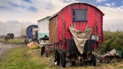 В Тульской области ОМОН оцепил сельскую администрацию из-за атаки цыган