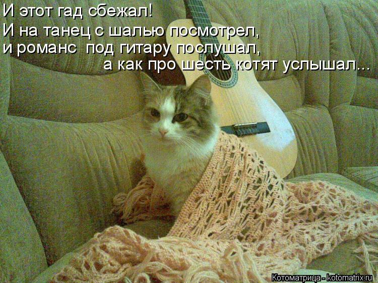 Котоматрица: И этот гад сбежал! И на танец с шалью посмотрел, и романс  под гитару послушал, а как про шесть котят услышал...