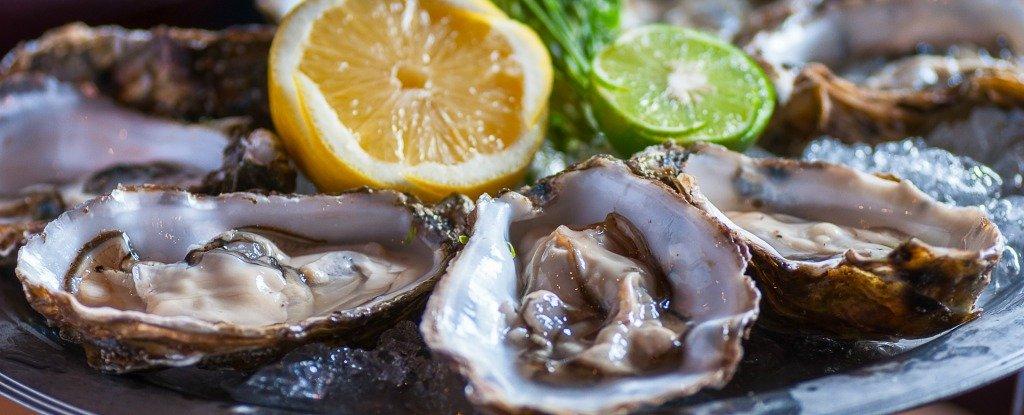 6 блюд, которые ни за что не станет есть эксперт по пищевым отравлениям