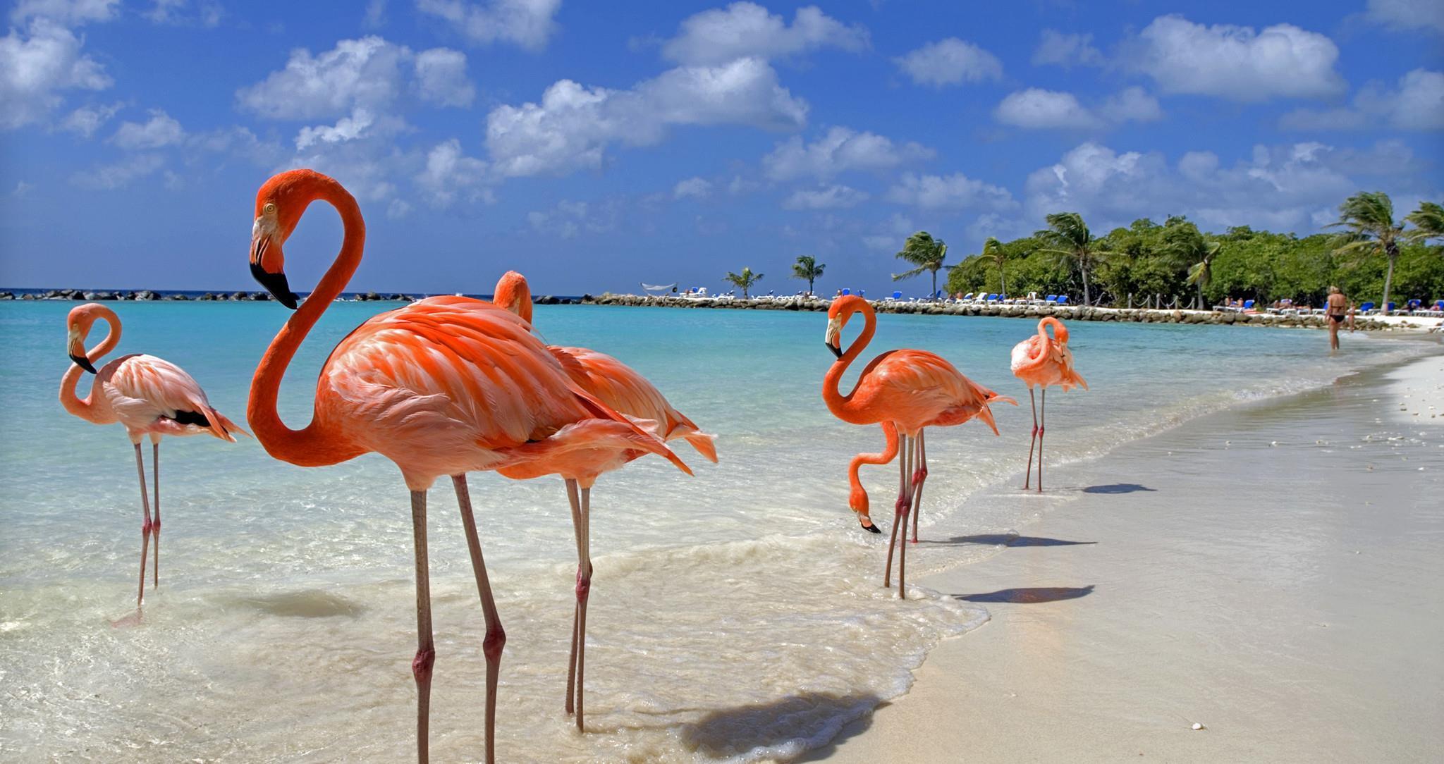 Самые красивые карибские острова
