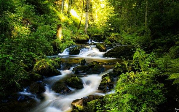 pritchi o zhizni  Притча: Ручеек и река
