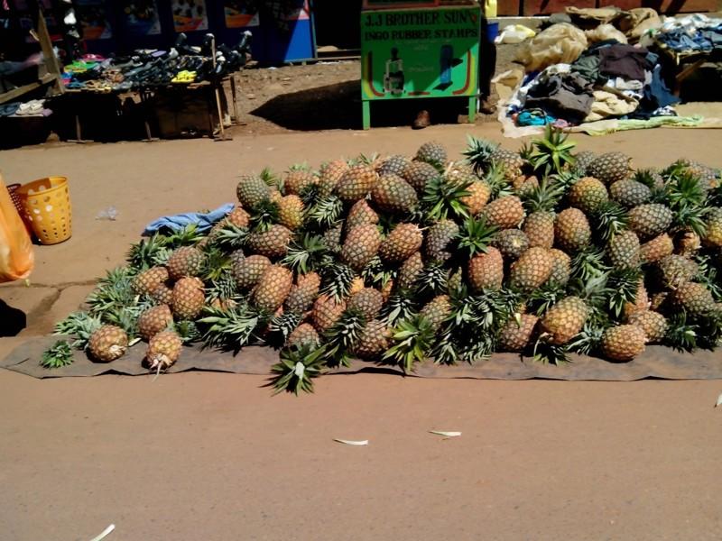В дебрях восточной Африки