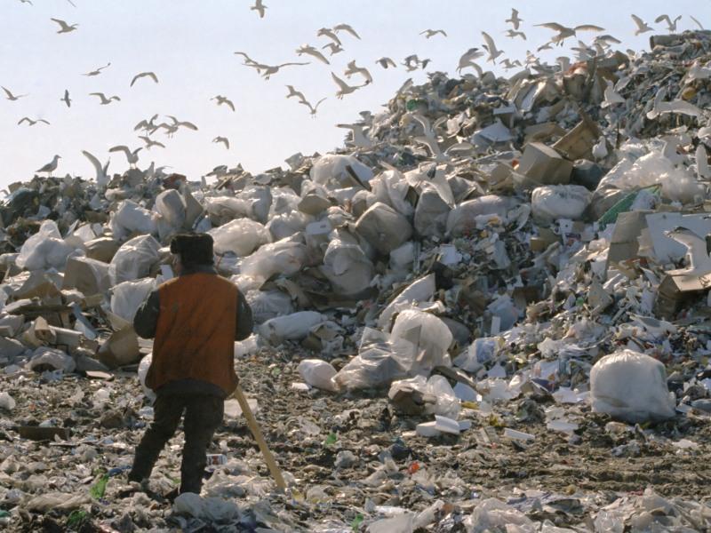 Свой сор – в чужой регион? Куда повезут московские и питерские отходы