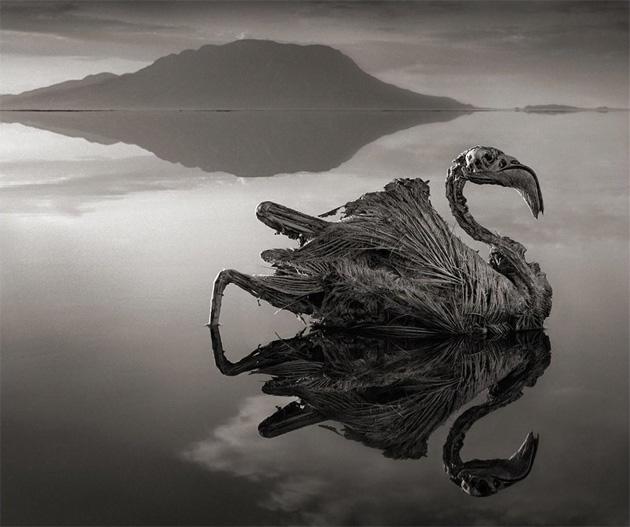 Прогулка по одному из самых странных озера мира