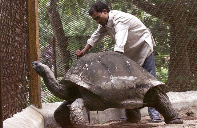 Древнейшему существу в мире 507 лет, но его случайно убили