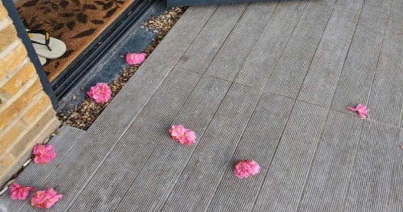 Тайный поклонник каждый день приносил цветы к порогу ее двери. В один день она застала его с поличным!
