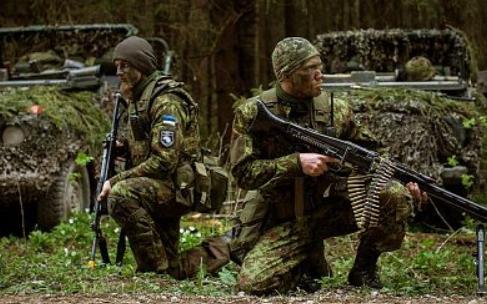 8 боевых приемов Прибалтики: как страны Балтии готовятся к войне с Россией