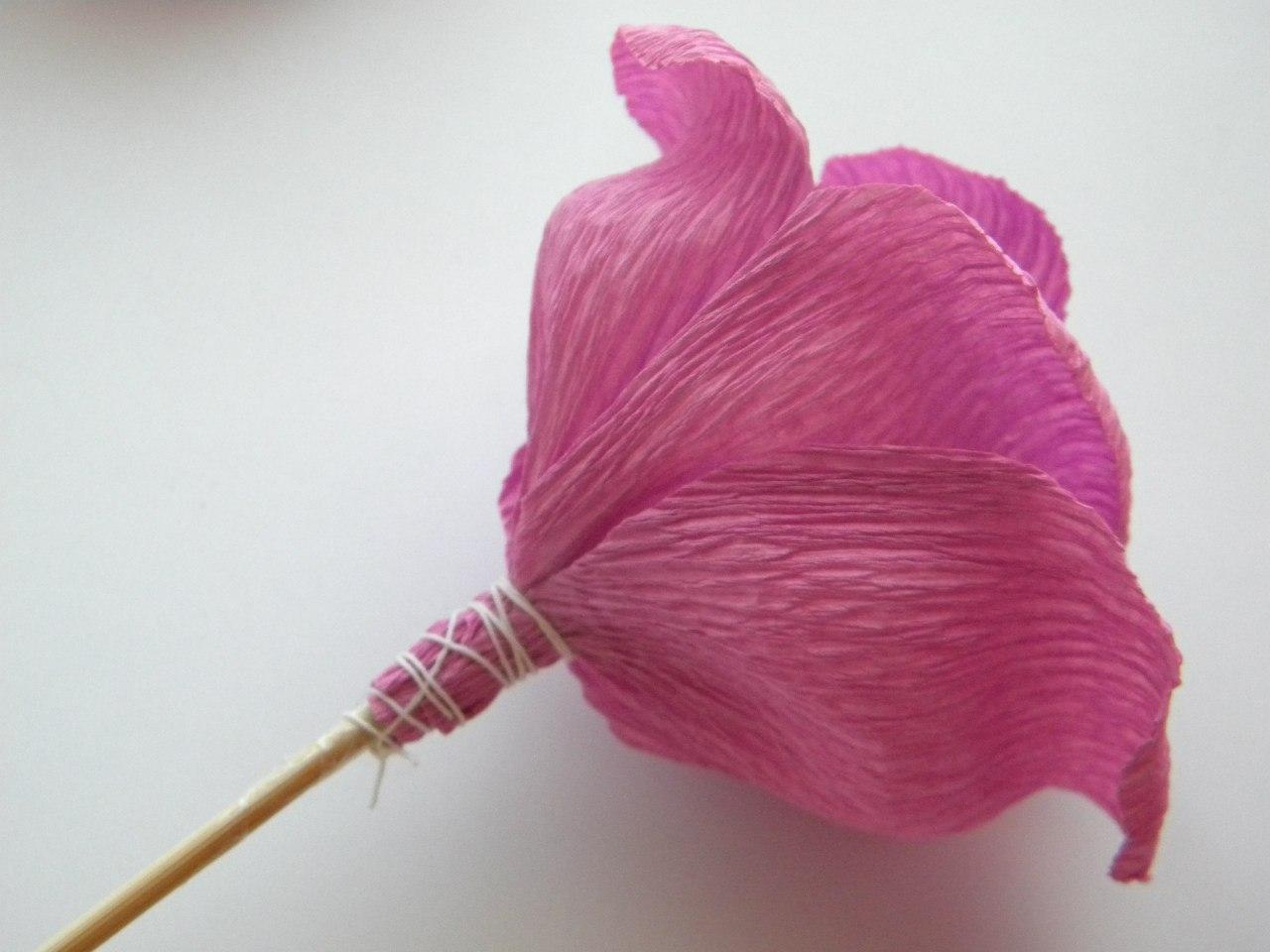 Цветы из креп бумаги мастер класс с пошаговым фото