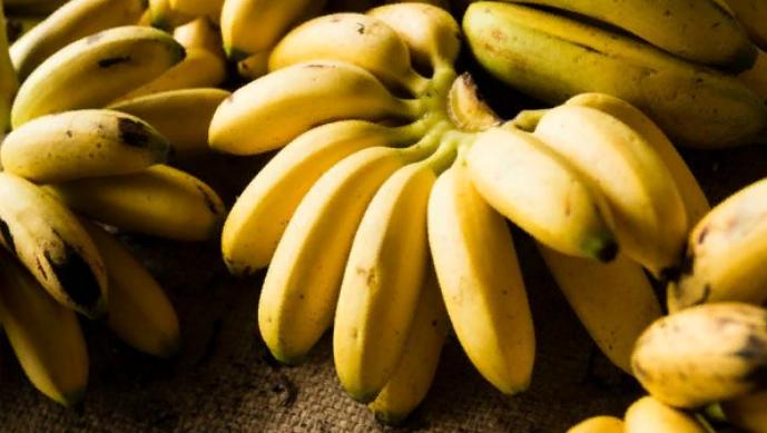 Какой сорт бананов — наиболе…