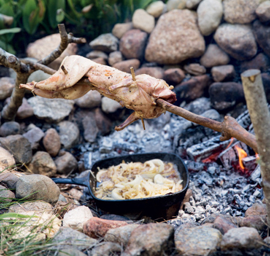 Как жарить мясо на вертеле