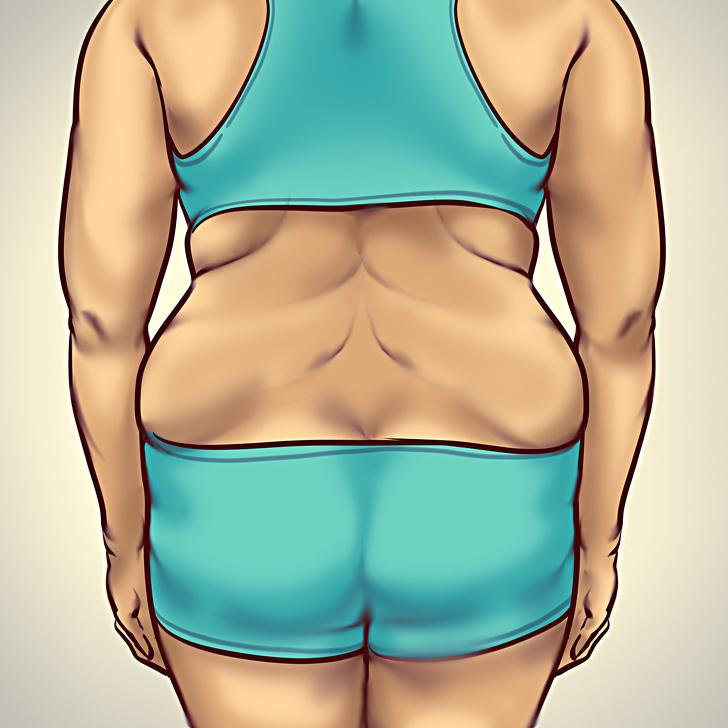 На пути к телу вашей мечты — как обмануть гормоны, вызывающие ожирение