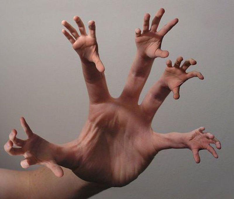 Какая часть человеческого тела может регенерировать?