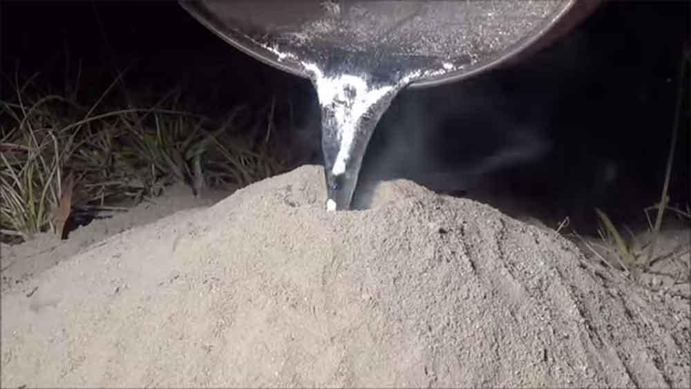 fire-ant-molten-aluminum