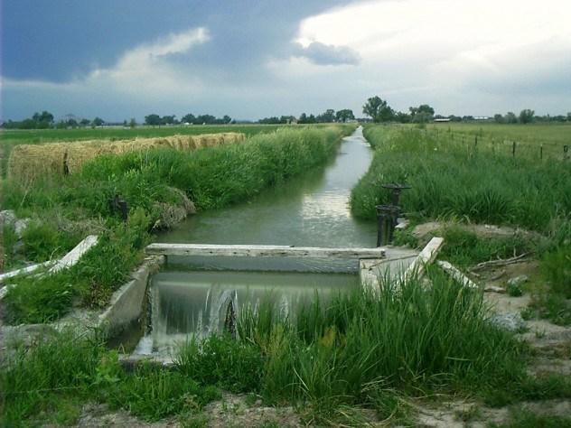 Фото. Чистая экология