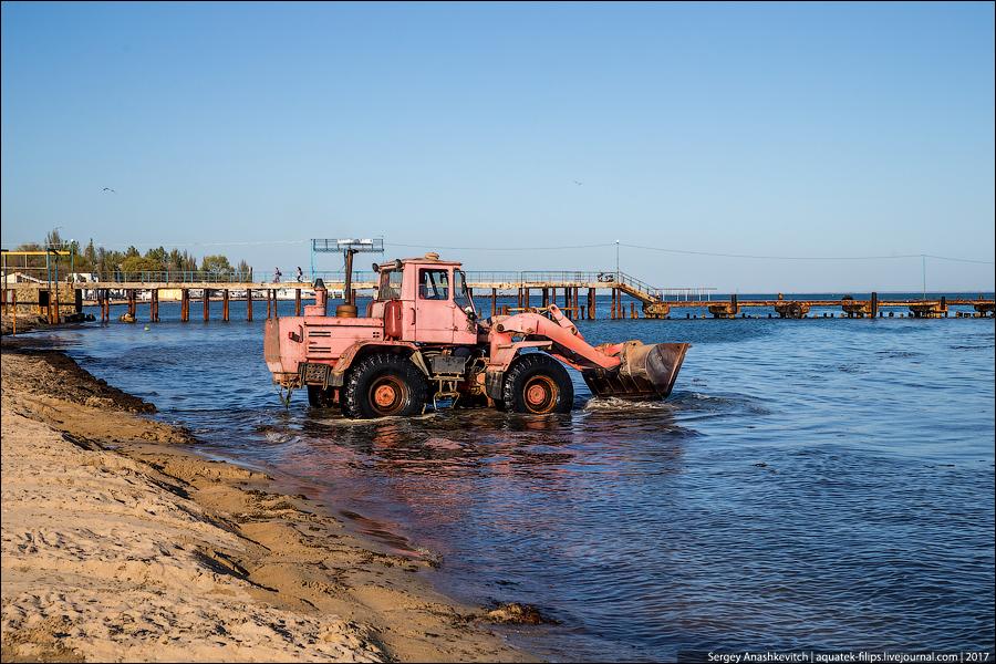 По-крымски. Уникальная технология очистки пляжа от водорослей