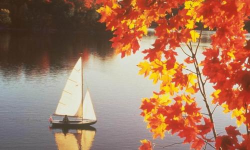 Народные приметы на 5 октября – День Фока, День Иона