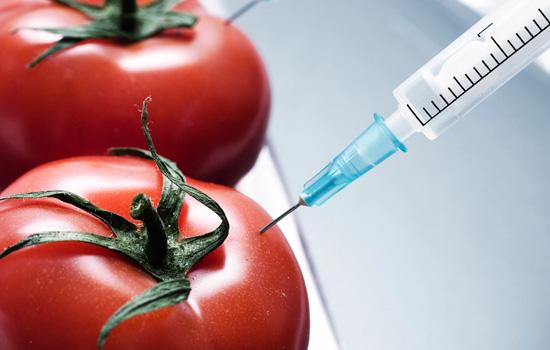 Остерегайтесь их! 6 крайне нежелательных ингредиентов в составе привычных продуктов