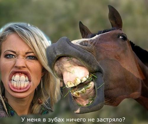 tetya-soset-chlen-na-ulitse