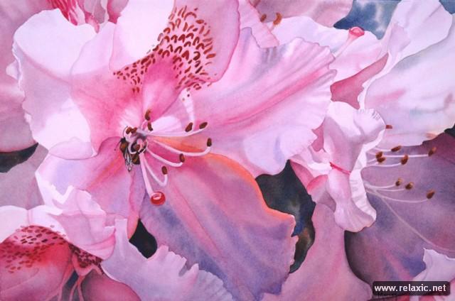 Красота в квадрате — акварельные сады Марни Вард