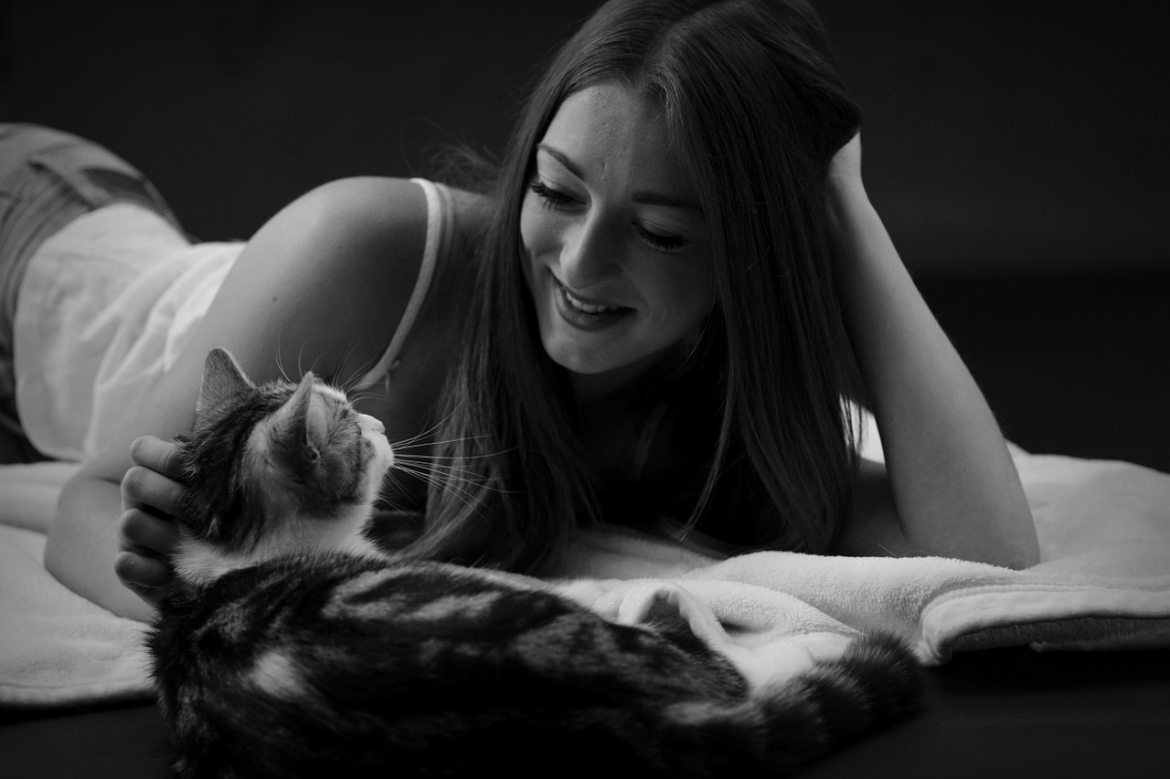 Женщины-кошки. Женщины-собаки