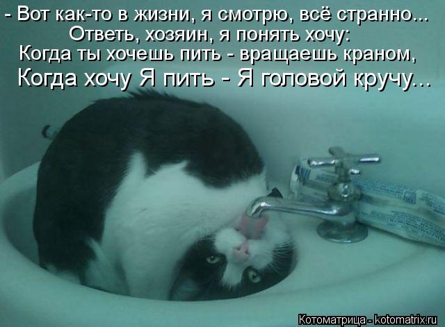 Котоматрица: - Вот как-то в жизни, я смотрю, всё странно... Ответь, хозяин, я понять хочу: Когда ты хочешь пить - вращаешь краном, Когда хочу Я пить - Я головой