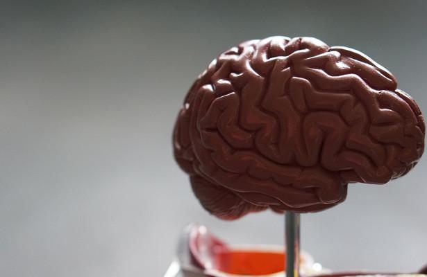 Картинки по запроÑу Почему таблетки Ð´Ð»Ñ ÑƒÐ»ÑƒÑ‡ÑˆÐµÐ½Ð¸Ñ Ñ€Ð°Ð±Ð¾Ñ'Ñ‹ мозга беÑполезны и чем их можно заменить: Ñоветы нейробиолога