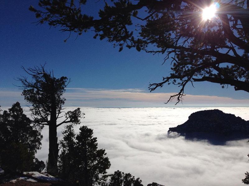 Раз в 10 лет туман заполняет Гранд-Каньон