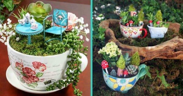Жил-был сказочный сад! Растительные композиции в ЧАШКАХ: 10 милых идей для хорошего настроения ;)