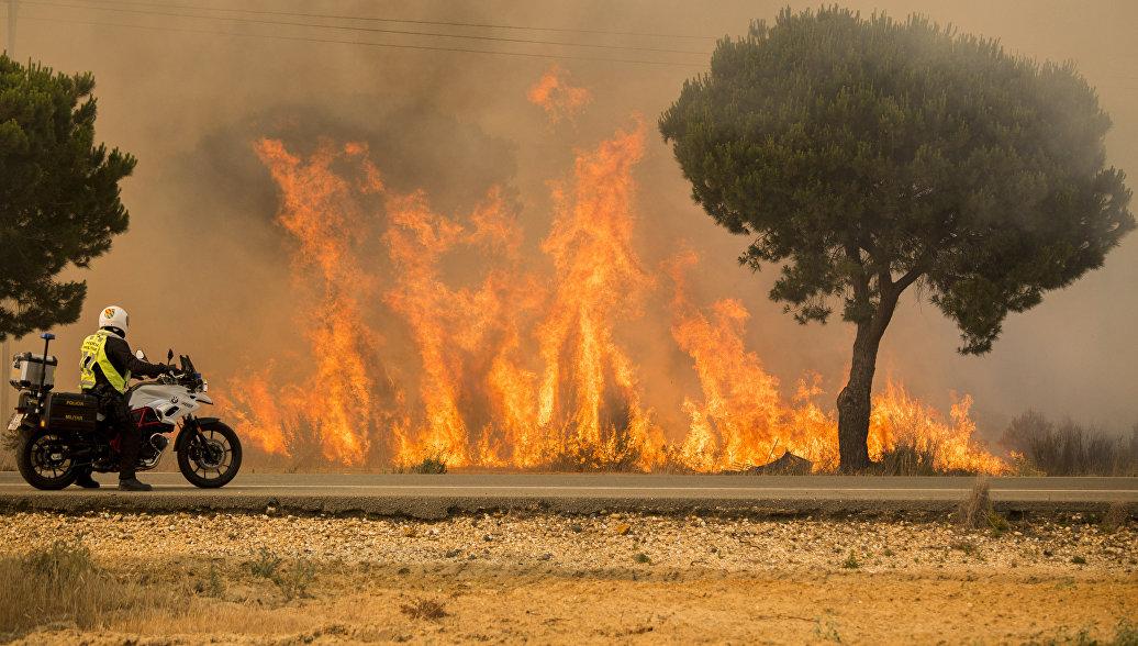 Заблудившийся в лесу турист спровоцировал крупный пожар в Черногории
