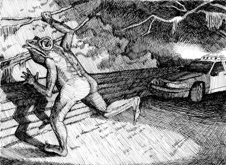 Странных прямоходящих жаб с …