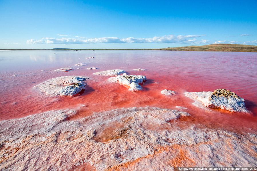 Кояшское Соленое озеро розового цвета