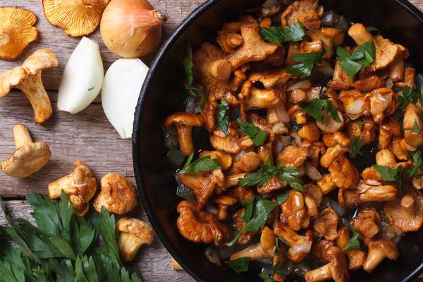 Белые грибы с луком рецепты