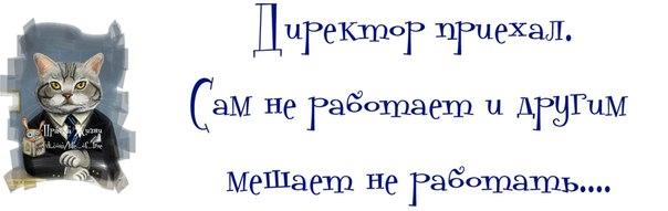 http://mtdata.ru/u16/photo5AAE/20878176724-0/original.jpg