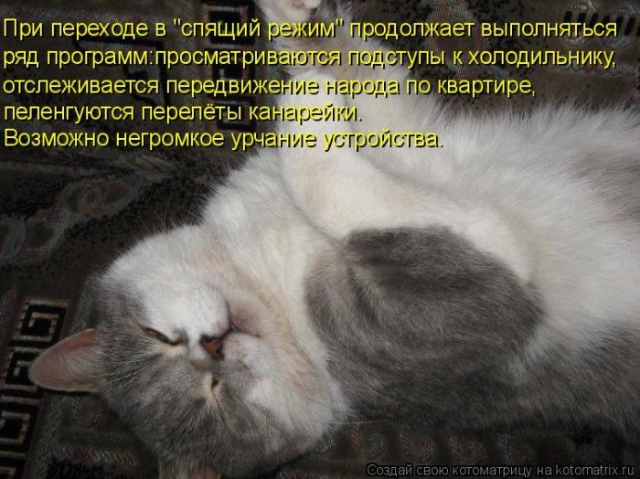Мысли вслух :)