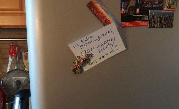 Фотоподборка сообщений на холодильниках
