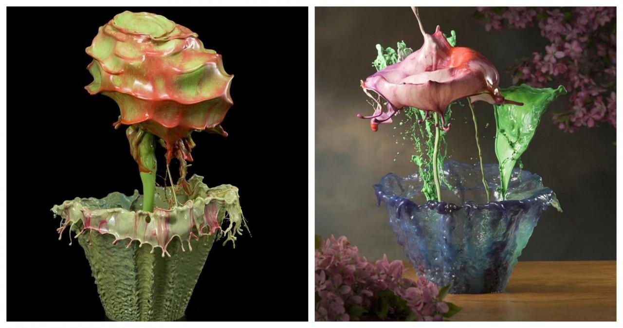 Фотограф, который «приручил» воду: невероятной красоты цветы из краски и воды
