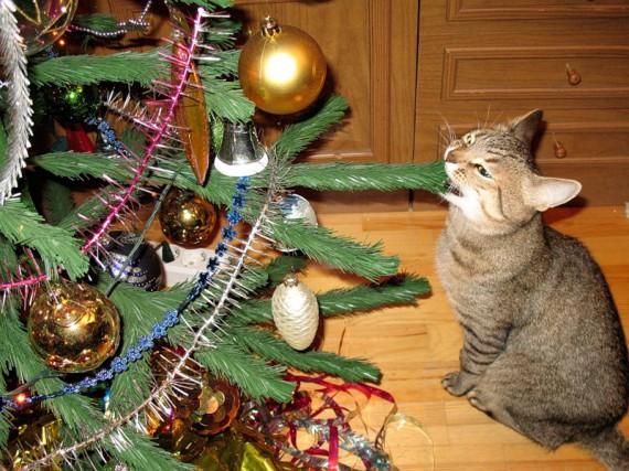 Создаем новогоднее настроение!!!!!! Original